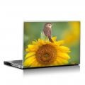 Скин за лаптоп - Птици - 043