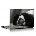 Скин за лаптоп - Маймуни - 013