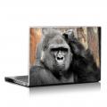 Скин за лаптоп - Маймуни - 006