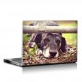 Скин за лаптоп - Кучета - 057