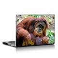 Скин за лаптоп - Маймуни - 007