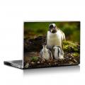 Скин за лаптоп - Птици - 036