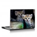 Скин за лаптоп - Диви котки - 031