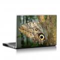 Скин за лаптоп - Пеперуди - 001