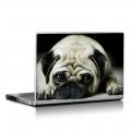 Скин за лаптоп - Кучета - 048