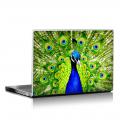 Скин за лаптоп - Птици - 034