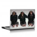 Скин за лаптоп - Маймуни - 025