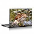 Скин за лаптоп - Птици - 027