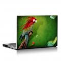 Скин за лаптоп - Птици - 041