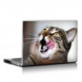 Скин за лаптоп - Котета - 016