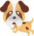 Серия смешни животни - куче