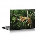 Скин за лаптоп - Диви котки - 029