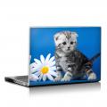 Скин за лаптоп - Котета - 040