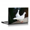 Скин за лаптоп - Птици - 011
