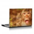 Скин за лаптоп - Маймуни - 003