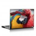 Скин за лаптоп - Птици - 018