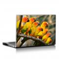 Скин за лаптоп - Птици - 017