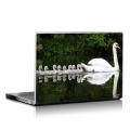 Скин за лаптоп - Птици - 022