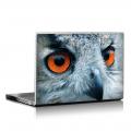 Скин за лаптоп - Птици - 038