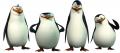 Стикери Мадагаскар - Пингвините 3-