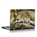 Скин за лаптоп - Диви котки - 026