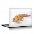 Скин за лаптоп - Животни - 001