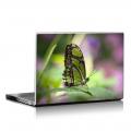 Скин за лаптоп - Пеперуди - 026