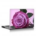 Скин за лаптоп - Цветя - 046