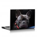 Скин за лаптоп - Кучета - 082