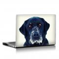 Скин за лаптоп - Кучета - 004