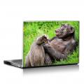 Скин за лаптоп - Маймуни - 019