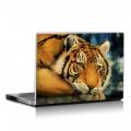 Скин за лаптоп - Диви котки - 002