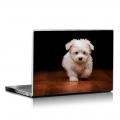 Скин за лаптоп - Кучета - 019
