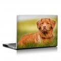 Скин за лаптоп - Кучета - 055