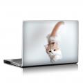 Скин за лаптоп - Котета - 033