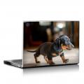 Скин за лаптоп - Кучета - 074