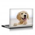 Скин за лаптоп - Кучета - 044