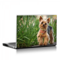 Скин за лаптоп - Кучета - 026