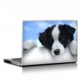 Скин за лаптоп - Кучета - 054