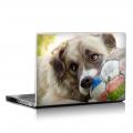 Скин за лаптоп - Кучета - 039