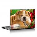 Скин за лаптоп - Кучета - 058