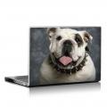 Скин за лаптоп - Кучета - 042