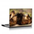 Скин за лаптоп - Диви котки - 003