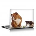 Скин за лаптоп - Кучета - 010