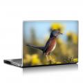 Скин за лаптоп - Птици - 002