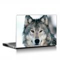 Скин за лаптоп - Вълци - 0002