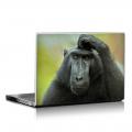 Скин за лаптоп - Маймуни - 011
