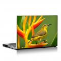 Скин за лаптоп - Птици - 007