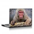 Скин за лаптоп - Маймуни - 017