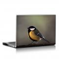 Скин за лаптоп - Птици - 012